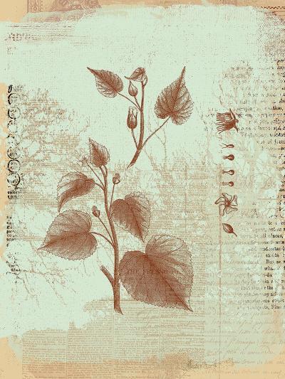 Botanical I-Ken Hurd-Art Print