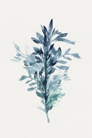 https://imgc.artprintimages.com/img/print/botanical-iii_u-l-q1aov7r0.jpg?p=0