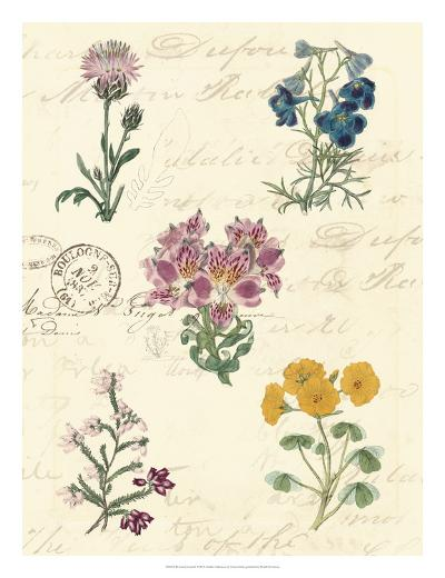 Botanical Journal I-Vision Studio-Giclee Print