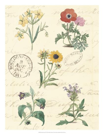 Botanical Journal IV-Vision Studio-Giclee Print