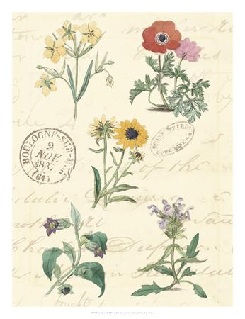 https://imgc.artprintimages.com/img/print/botanical-journal-iv_u-l-f8hsjm0.jpg?p=0