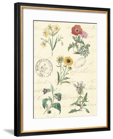 Botanical Journal IV-Vision Studio-Framed Giclee Print