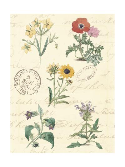 Botanical Journal IV-Vision Studio-Art Print