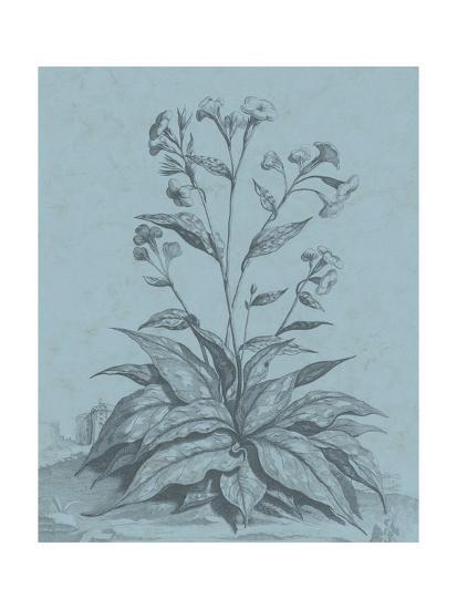 Botanical on Teal VI-Vision Studio-Art Print