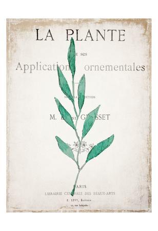 https://imgc.artprintimages.com/img/print/botanical-pages-1_u-l-f9a5la0.jpg?p=0