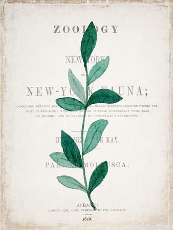https://imgc.artprintimages.com/img/print/botanical-pages-2_u-l-q1bqqin0.jpg?p=0
