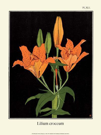 Botanical Print, Orange Lily, 1905-Luite Klaver-Art Print
