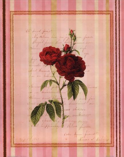Botanical Rose III--Art Print