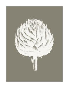 Artichoke (Burlap & Ivory) by Botanical Series
