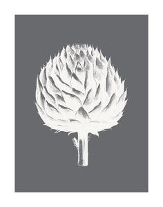 Artichoke (Gray & Ivory) by Botanical Series