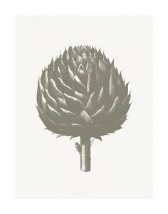 Artichoke (Ivory & Burlap) by Botanical Series