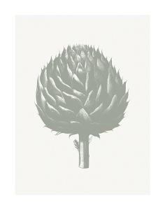 Artichoke (Ivory & Sage) by Botanical Series