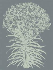 Lilies 7 by Botanical Series