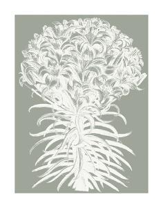 Lilies (Sage & Ivory) by Botanical Series