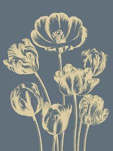 Tulip, no. 2 by Botanical Series