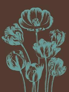 Tulip, no. 6 by Botanical Series