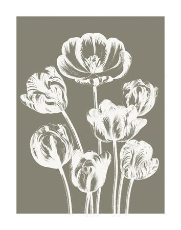 Tulips (Burlap & Ivory)