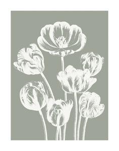 Tulips (Sage & Ivory) by Botanical Series