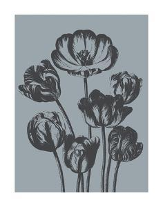 Tulips (Slate & Ink) by Botanical Series