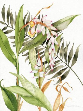 https://imgc.artprintimages.com/img/print/botanical-shell-ginger_u-l-q1b0txd0.jpg?p=0