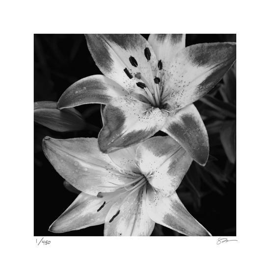 Botanical Study 5-Stacy Bass-Limited Edition