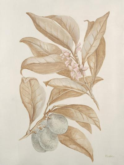 Botanicals III-Rikki Drotar-Giclee Print