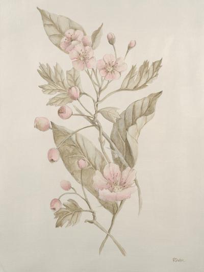 Botanicals IV-Rikki Drotar-Giclee Print