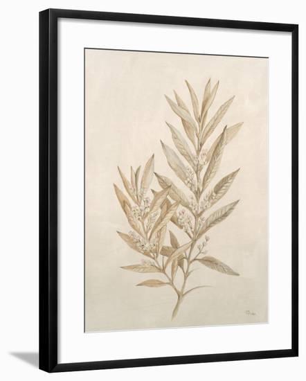Botanicals VIII-Rikki Drotar-Framed Giclee Print