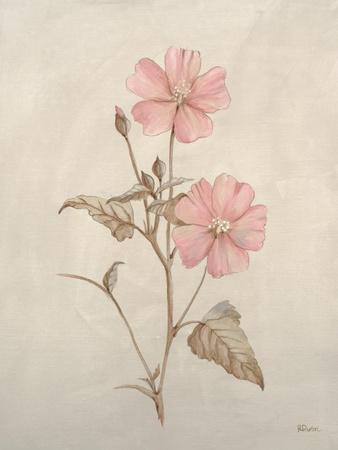 https://imgc.artprintimages.com/img/print/botanicals-xi_u-l-q113ivp0.jpg?p=0