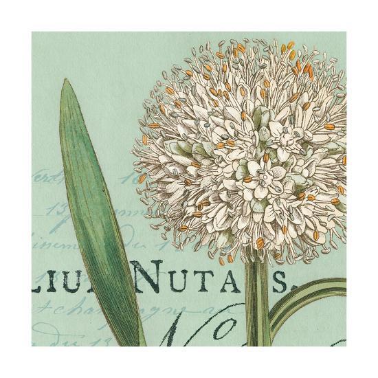Botanique Bleu II-Hugo Wild-Art Print