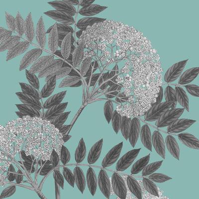 https://imgc.artprintimages.com/img/print/botaniska-iii_u-l-f6bndy0.jpg?p=0