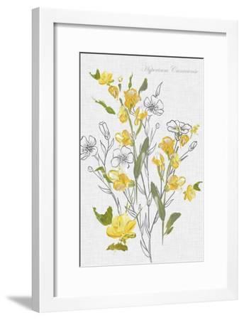 Botantical Yellow Flowers-Eva Watts-Framed Art Print
