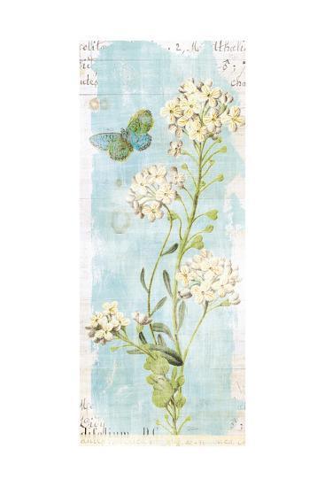 Botany Blue III-Sue Schlabach-Art Print