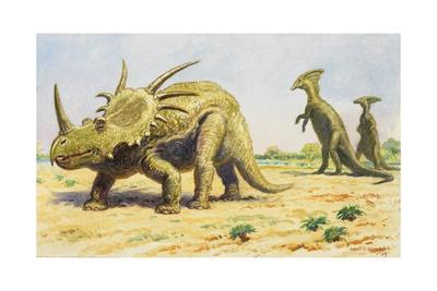 Both the Styracosaurus (Right) and the Parasaurolohus Were Herbivores-Charles R. Knight-Framed Giclee Print