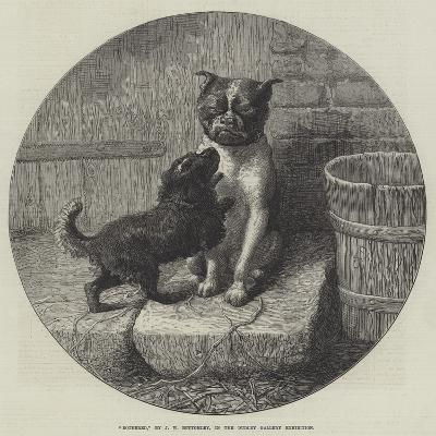 Bothered-John William Bottomley-Giclee Print
