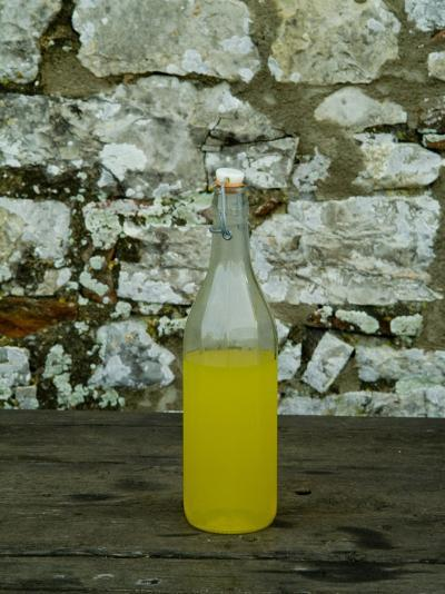 Bottle of Limoncello Sits on a Picnic Table at a Tuscan Villa, Tuscany, Italy-Todd Gipstein-Photographic Print