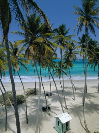 bottom bay beach east coast barbados windward islands west