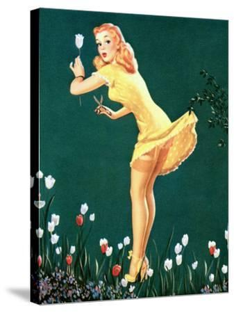 Boughed Beauty Pin-Up Picking Tulips c1940s-Al Leslie-Stretched Canvas Print