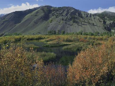 Boulder Mountains and Trail Creek Beaver Pond in Autumn, Idaho, Usa-Tim Fitzharris-Photographic Print