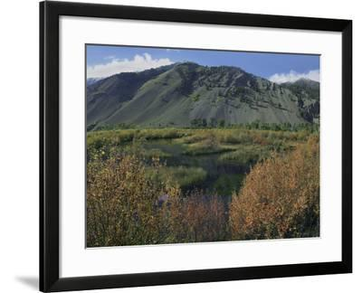 Boulder Mountains and Trail Creek Beaver Pond in Autumn, Idaho, Usa-Tim Fitzharris-Framed Photographic Print
