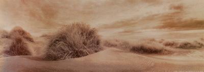 Boundless Vista-Mel Curtis-Art Print