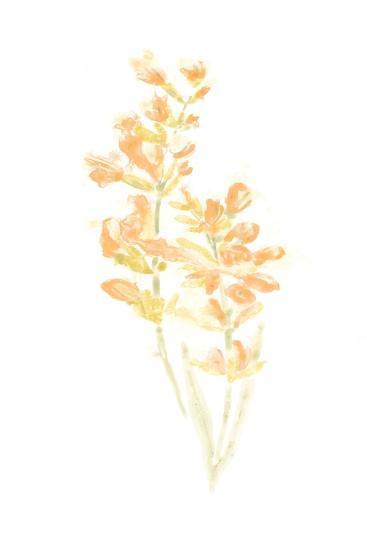 Bouquet Blush I-June Vess-Art Print
