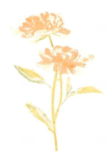 Bouquet Blush VII-June Vess-Art Print