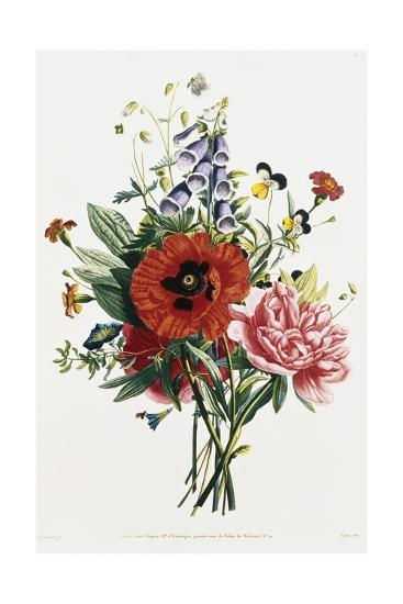 Bouquet of Foxglove, Poppy, and Peony-Jean Louis Prevost-Giclee Print