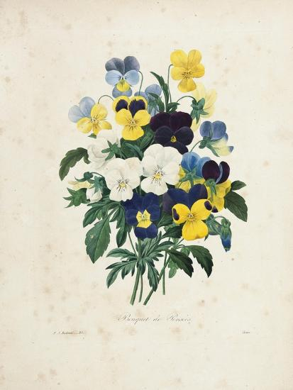 Bouquet of Pansies-Pierre-Joseph Redout?-Giclee Print