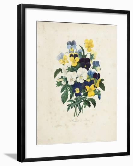 Bouquet of Pansies-Pierre-Joseph Redouté-Framed Giclee Print