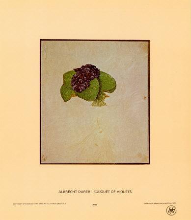 https://imgc.artprintimages.com/img/print/bouquet-of-violets_u-l-e81cl0.jpg?p=0