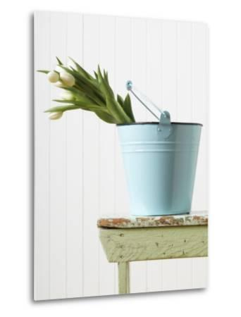 Bouquet of White Tulips in Bucket
