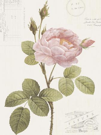 https://imgc.artprintimages.com/img/print/boutique-fleurs-i_u-l-f7a2y50.jpg?p=0