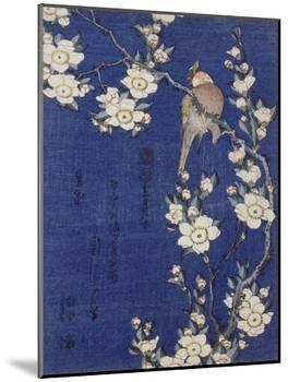 Bouvreuil et cerisier pleureur en fleur-Katsushika Hokusai-Mounted Giclee Print